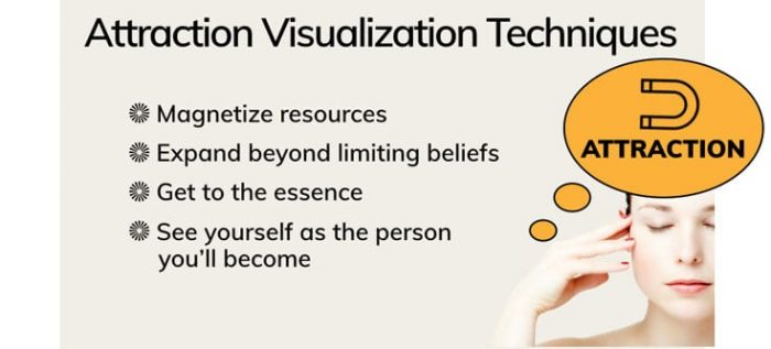 Attraction Visualization Techniques